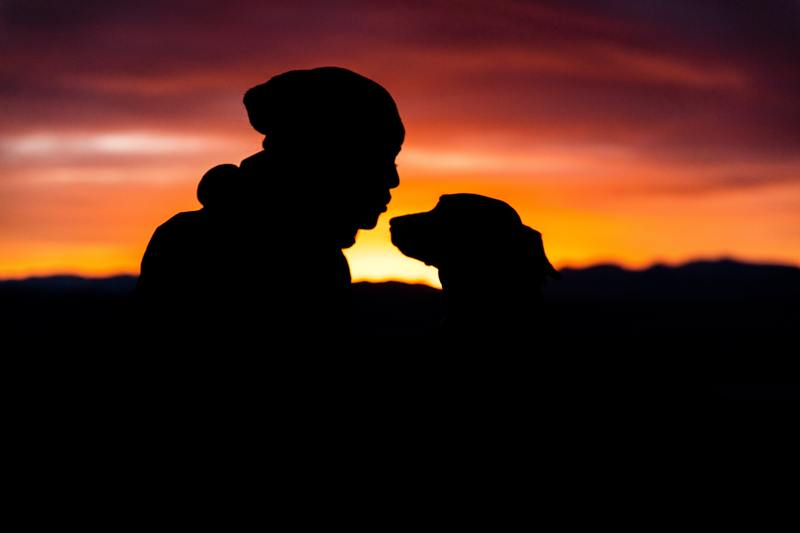 Bonding with your dog at sunset