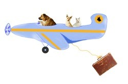 Emotional support animal flying plan with animals