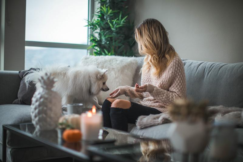 Living with your emotional support animal in no-pet housing