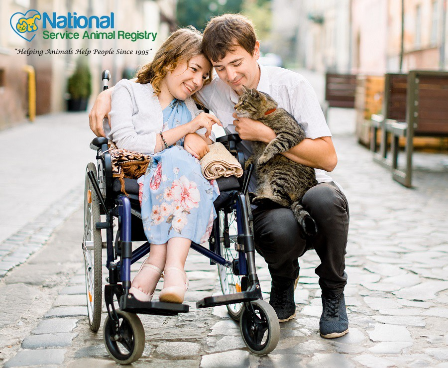 Man Holding Cat and Squatting Next to Woman in Wheelchair