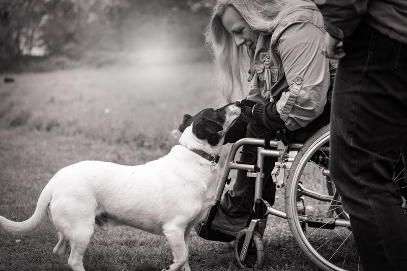 Service Dog and Wheel Chair