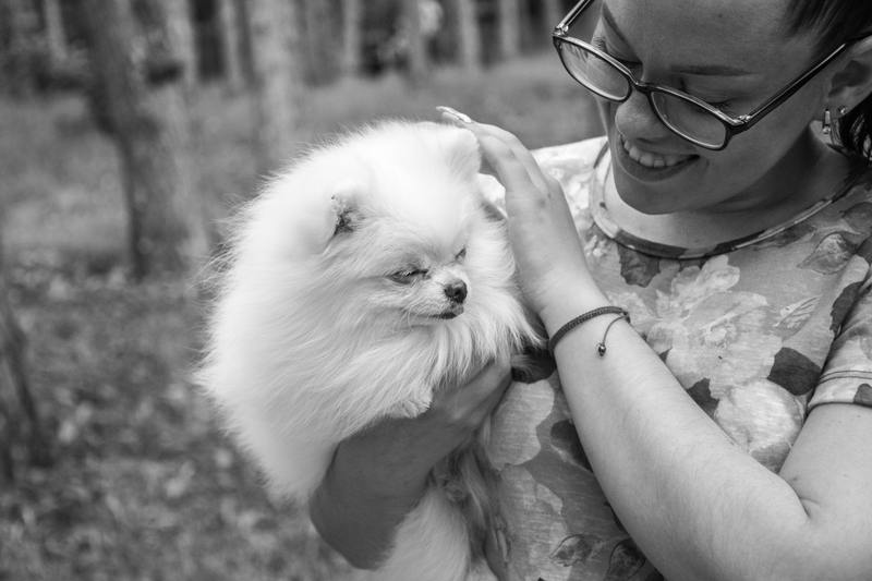 Socialize your emotional support dog puppy with other people