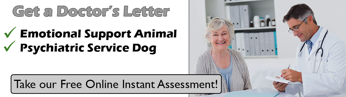 Get an Emotional Support Animal Letter