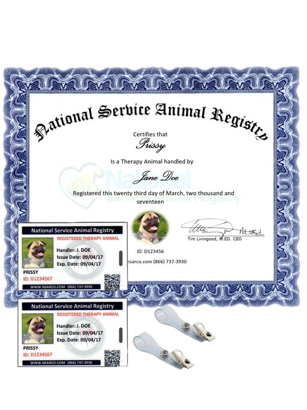 NSAR Therapy Animal Team Membership Renewal