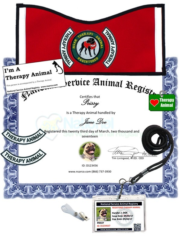 Therapy Animal Registration - Deluxe Kit