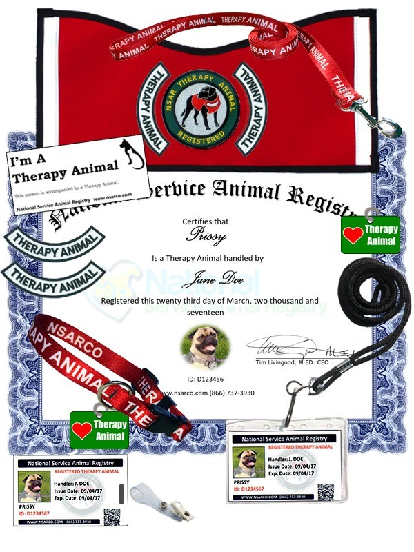 Simple Therapy Dog Certification And Esa Registration Kit