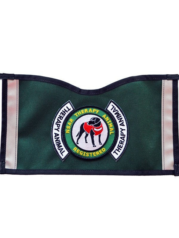 Therapy Animal Vest - Green