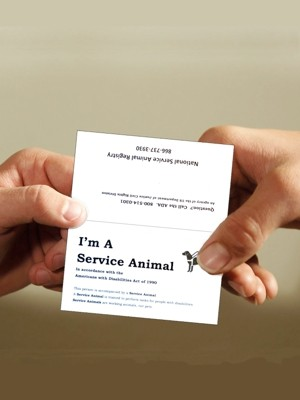 Service Dog Information Cards