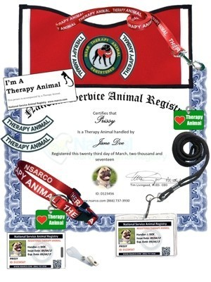 Therapy Animal Registration - Premium Kit