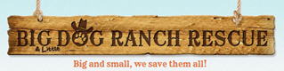 Big Dog Ranch Rescue