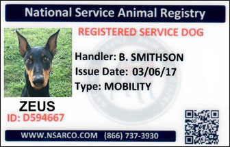 Service dog registration kit